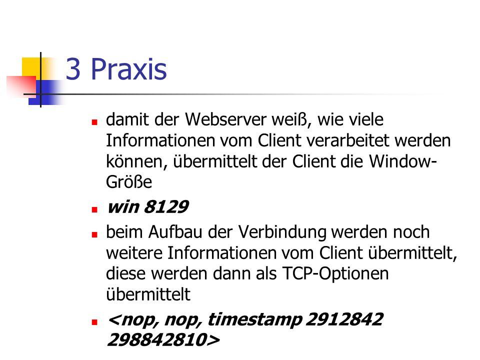 3 Praxis damit der Webserver weiß, wie viele Informationen vom Client verarbeitet werden können, übermittelt der Client die Window-Größe.