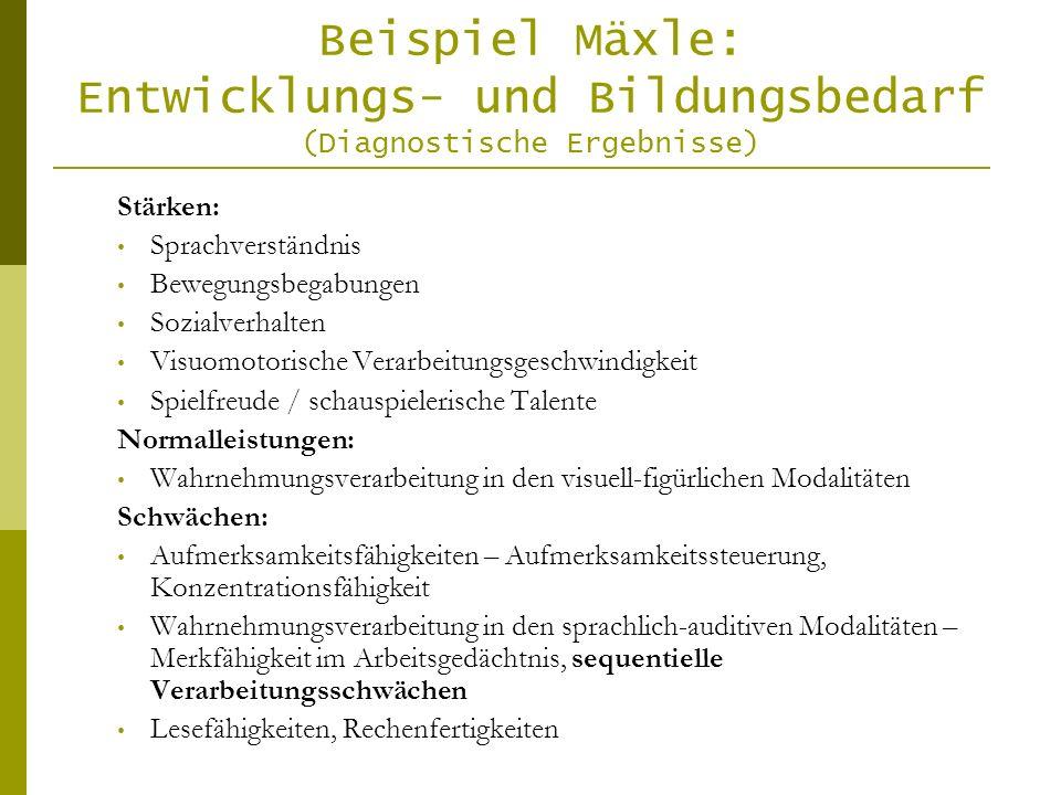 Beispiel Mäxle: Entwicklungs- und Bildungsbedarf (Diagnostische Ergebnisse)