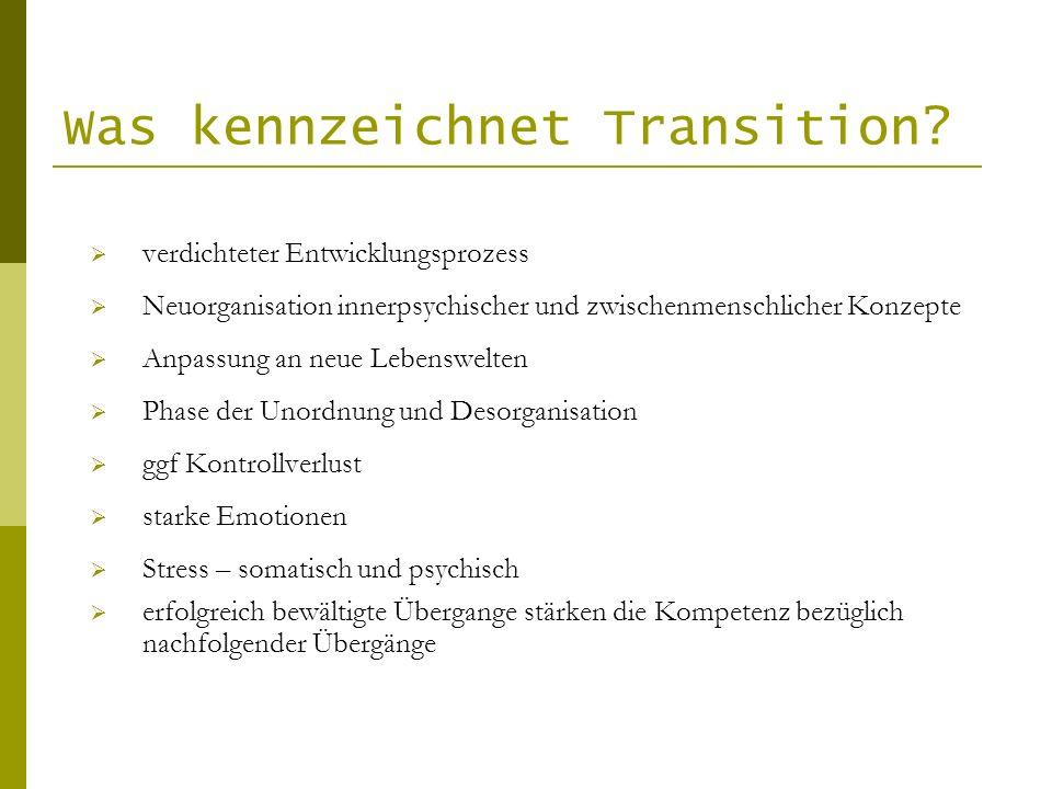 Was kennzeichnet Transition