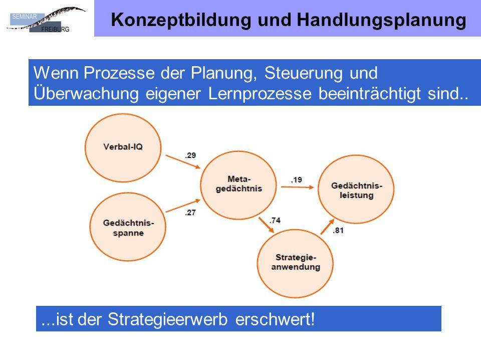 Konzeptbildung und Handlungsplanung
