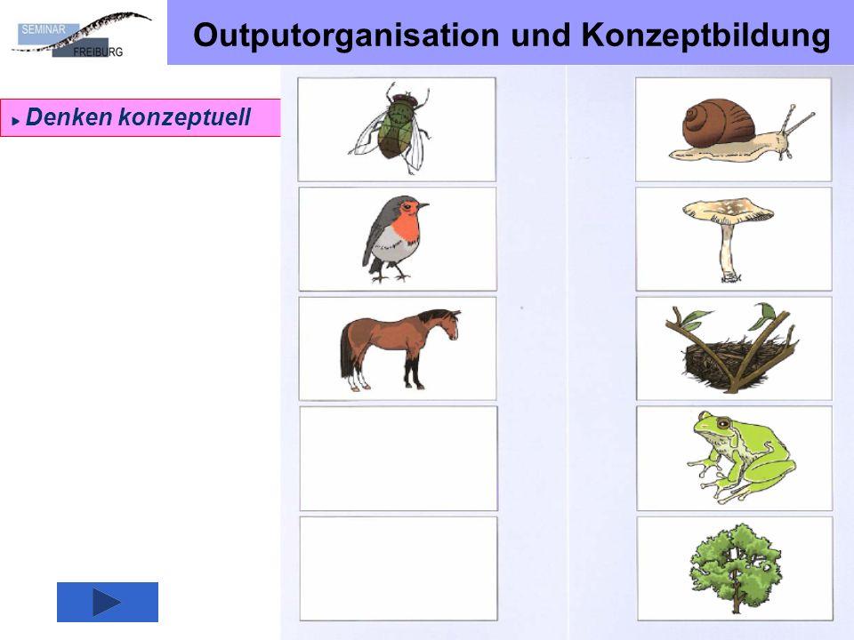 Outputorganisation und Konzeptbildung