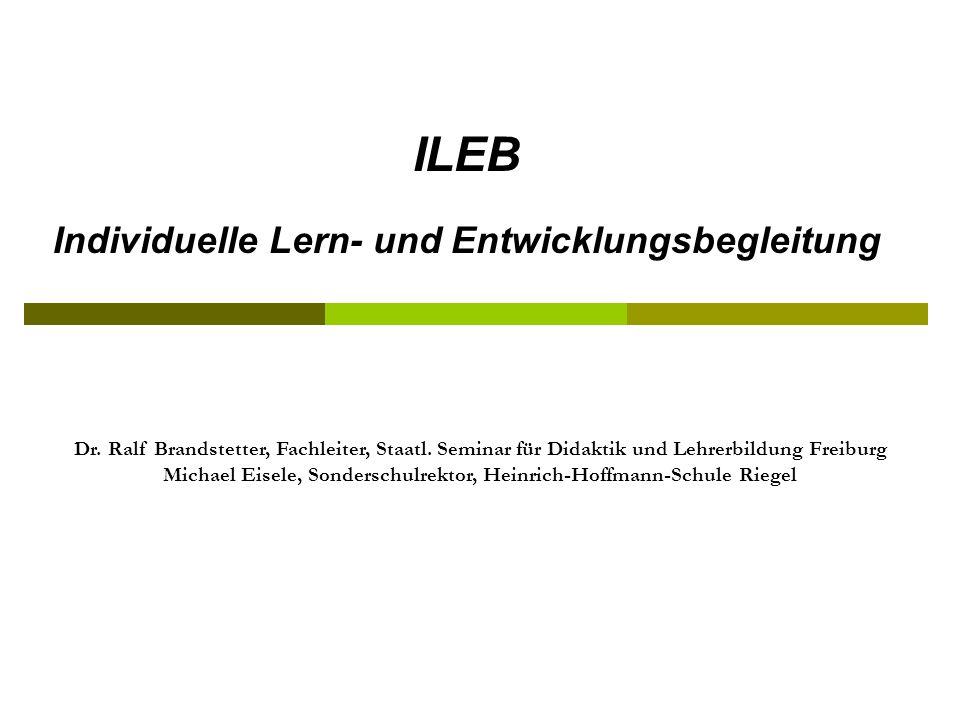 ILEB Individuelle Lern- und Entwicklungsbegleitung