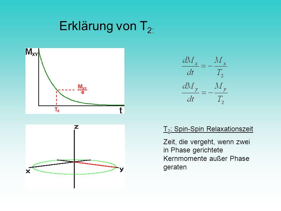 Erklärung von T2: T2: Spin-Spin Relaxationszeit