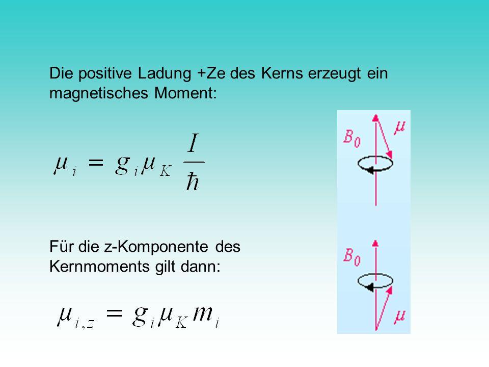 Die positive Ladung +Ze des Kerns erzeugt ein magnetisches Moment: