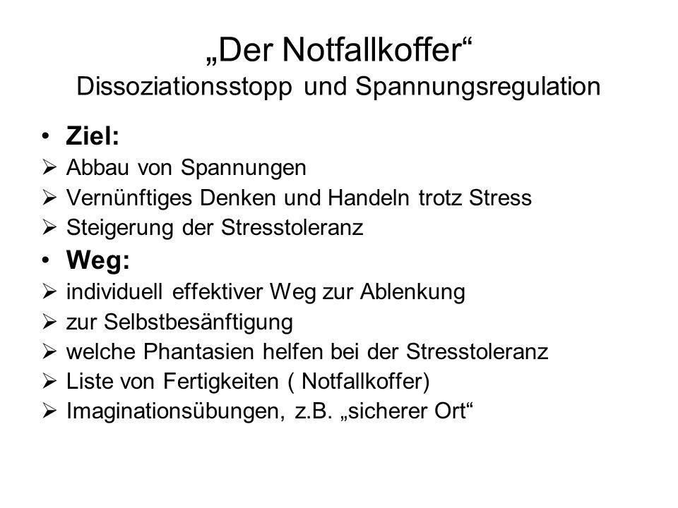 """""""Der Notfallkoffer Dissoziationsstopp und Spannungsregulation"""