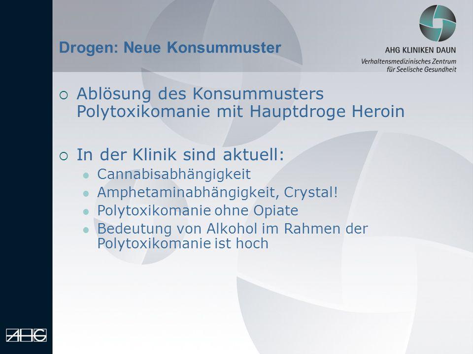 Ablösung des Konsummusters Polytoxikomanie mit Hauptdroge Heroin