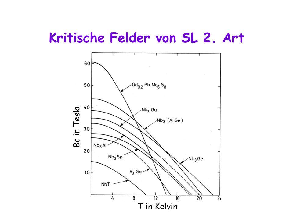 Kritische Felder von SL 2. Art