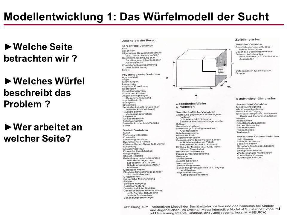 Modellentwicklung 1: Das Würfelmodell der Sucht