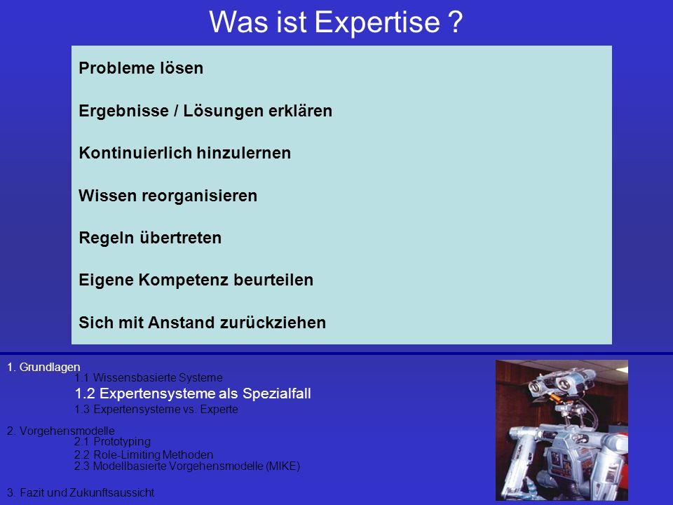 Was ist Expertise Probleme lösen Ergebnisse / Lösungen erklären