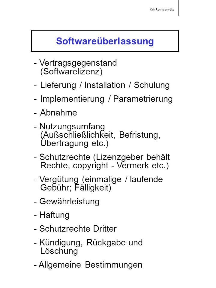 Softwareüberlassung - Vertragsgegenstand (Softwarelizenz)