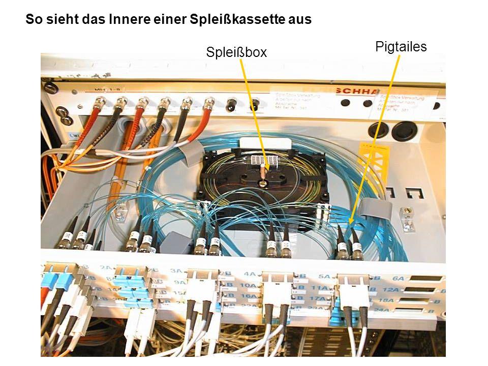 So sieht das Innere einer Spleißkassette aus