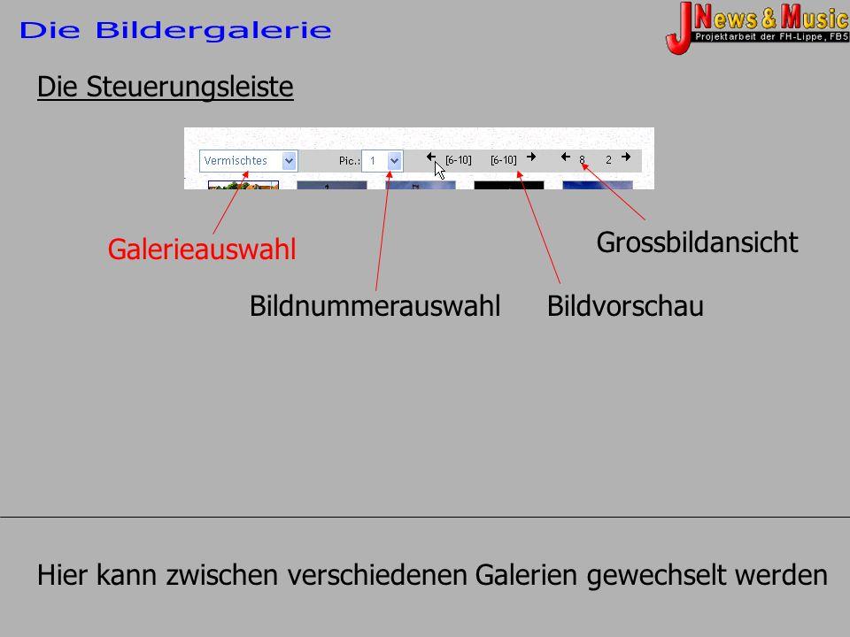 Die Bildergalerie Die Steuerungsleiste. Grossbildansicht. Galerieauswahl. Bildnummerauswahl. Bildvorschau.