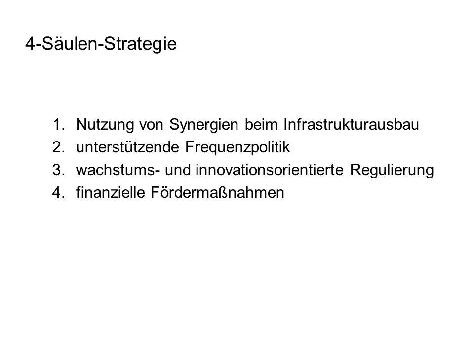 4-Säulen-Strategie Nutzung von Synergien beim Infrastrukturausbau