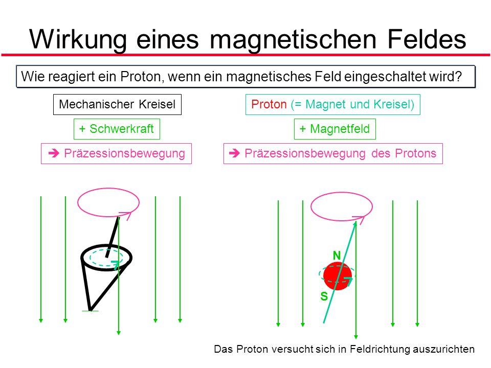 Wirkung eines magnetischen Feldes