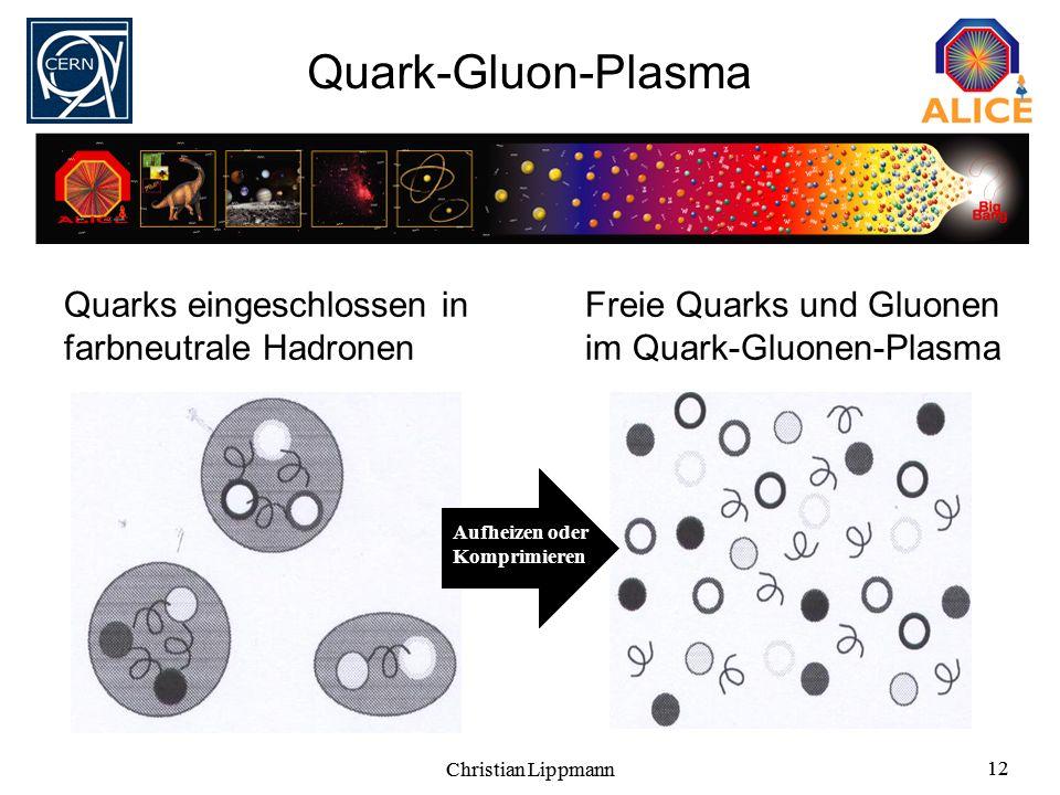 Quark-Gluon-Plasma Quarks eingeschlossen in farbneutrale Hadronen