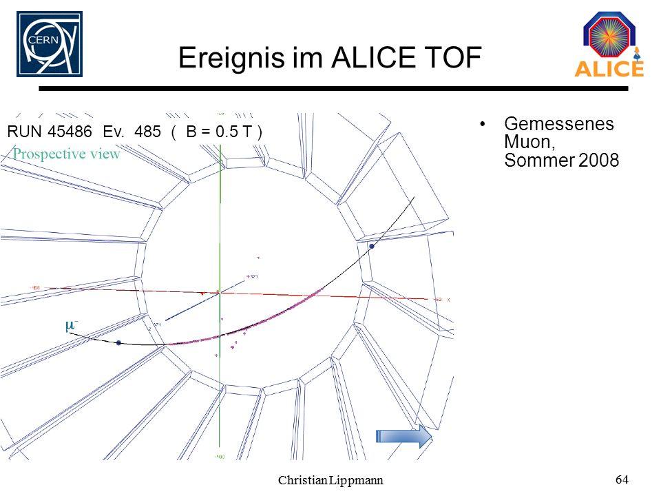 Ereignis im ALICE TOF Gemessenes Muon, Sommer 2008