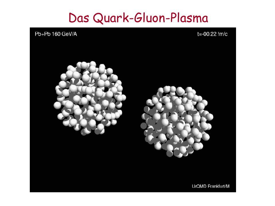 Das Quark-Gluon-Plasma