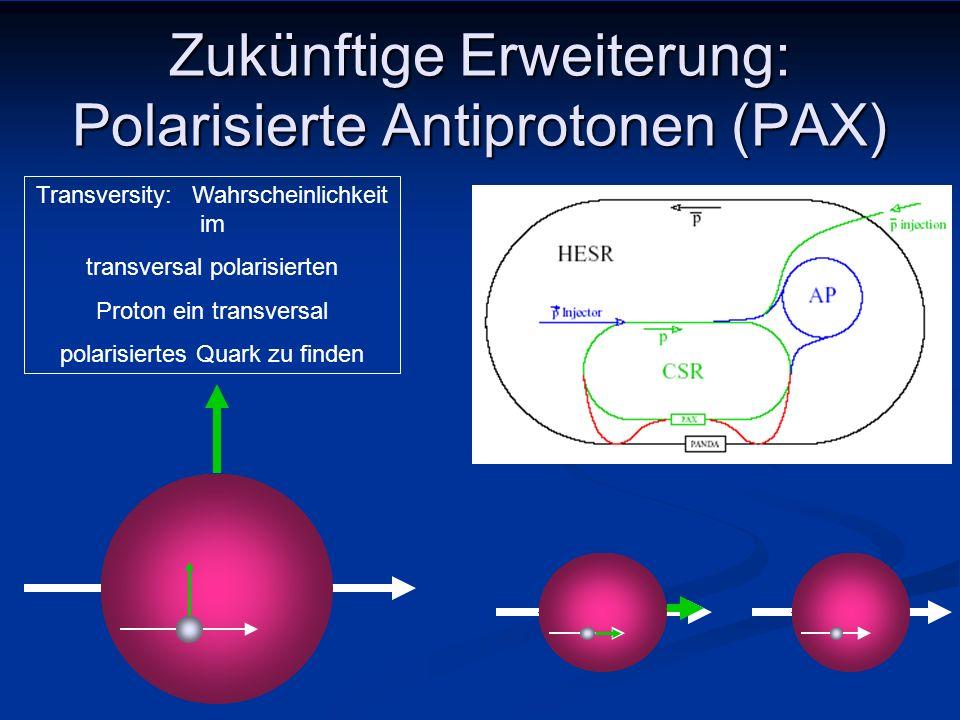 Zukünftige Erweiterung: Polarisierte Antiprotonen (PAX)