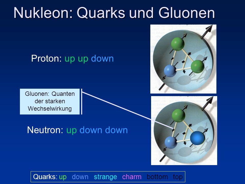 Nukleon: Quarks und Gluonen