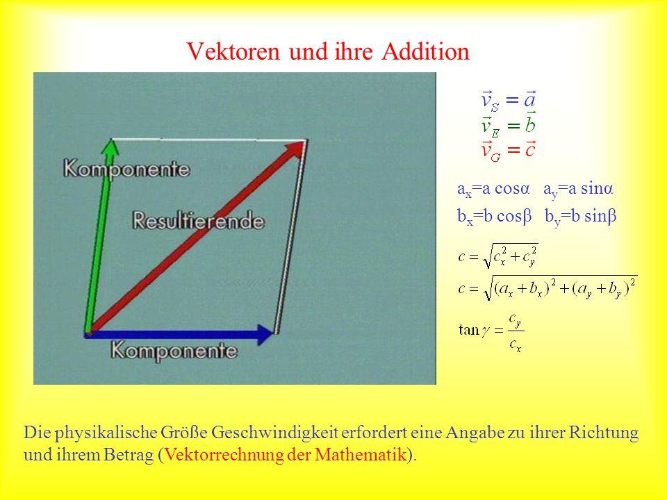 Vektoren und ihre Addition