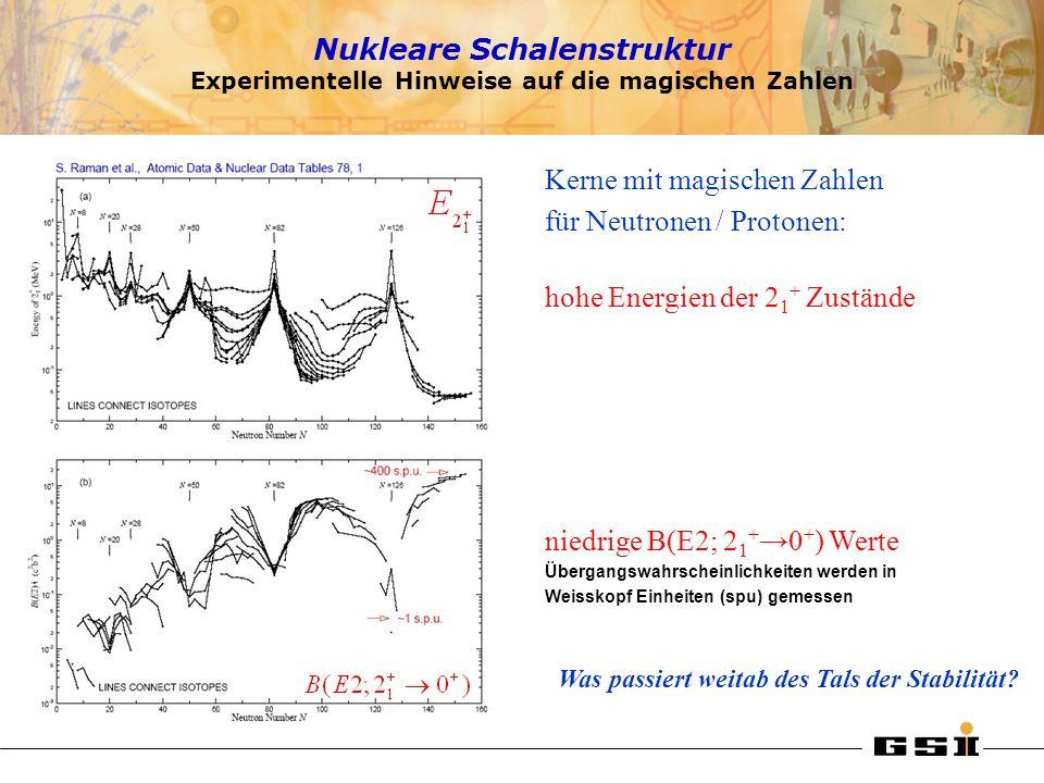 Nukleare Schalenstruktur