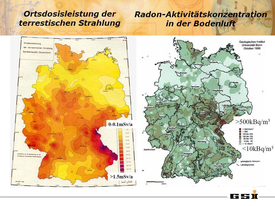 Ortsdosisleistung der terrestischen Strahlung