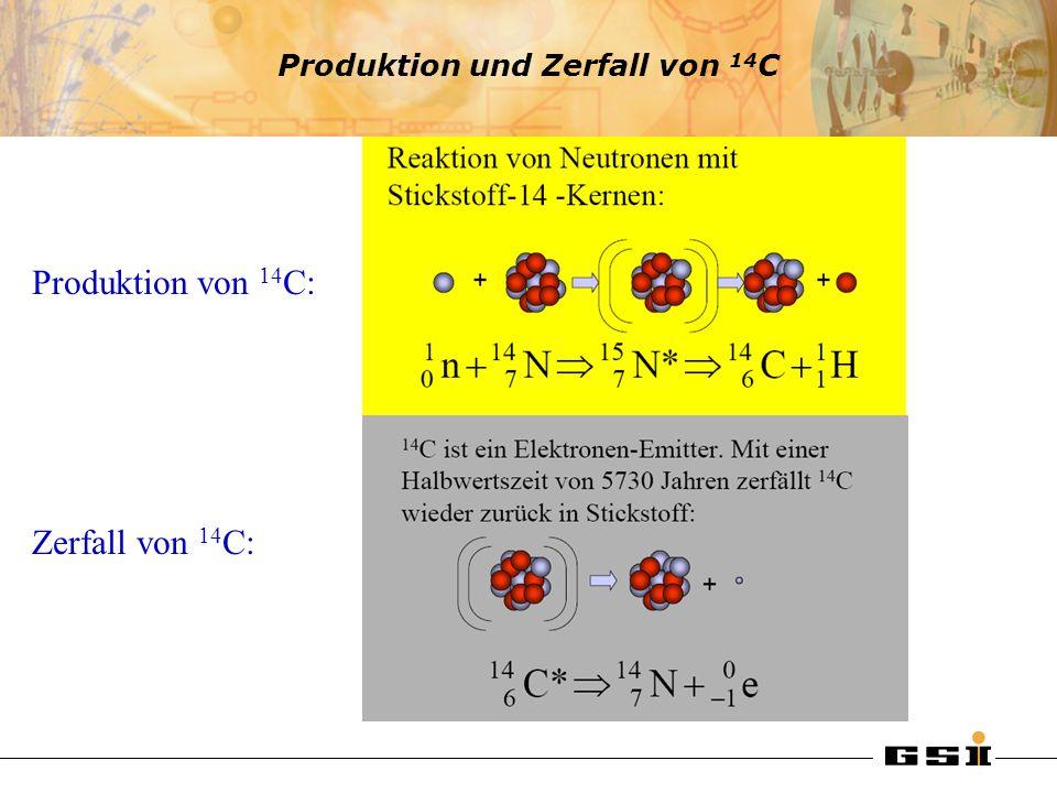 Produktion und Zerfall von 14C