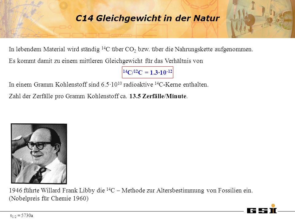 C14 Gleichgewicht in der Natur