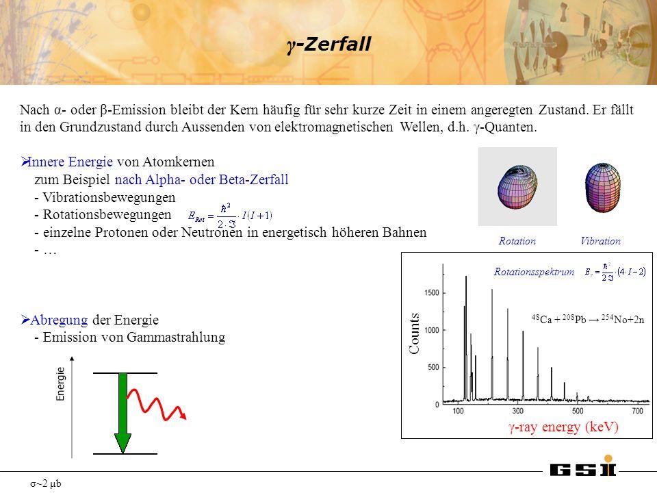 γ-Zerfall