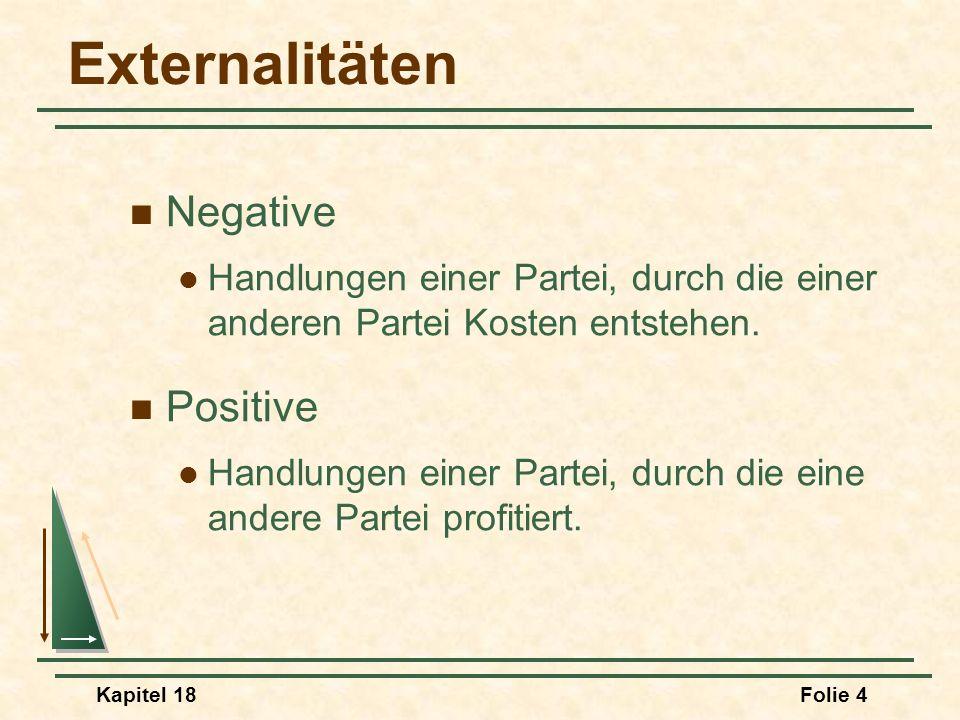 Externalitäten Negative Positive