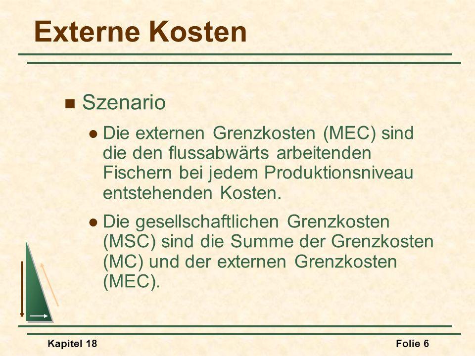 Externe Kosten Szenario