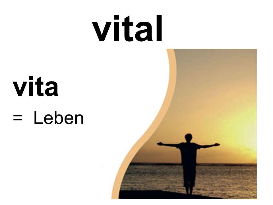 vital vita = Leben
