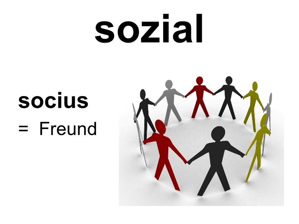 sozial socius = Freund