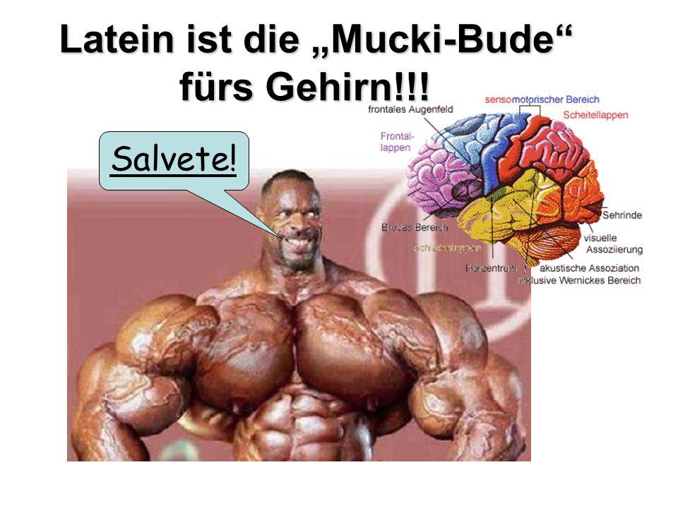 """Latein ist die """"Mucki-Bude fürs Gehirn!!!"""