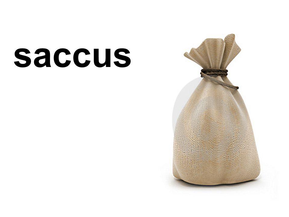 saccus
