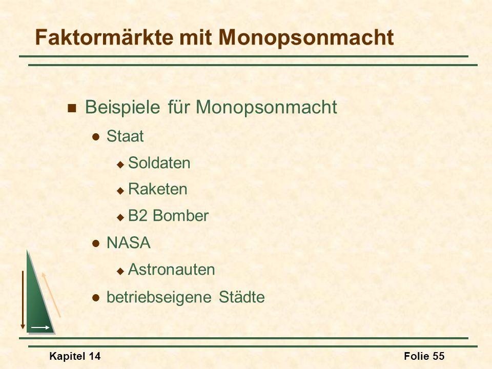 Faktormärkte mit Monopsonmacht