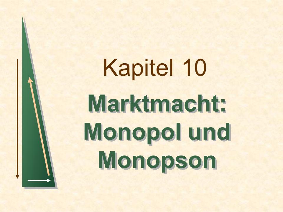 Marktmacht: Monopol und Monopson