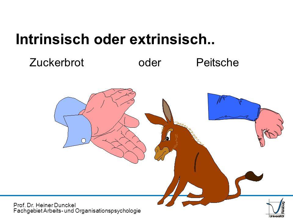 Intrinsisch oder extrinsisch..