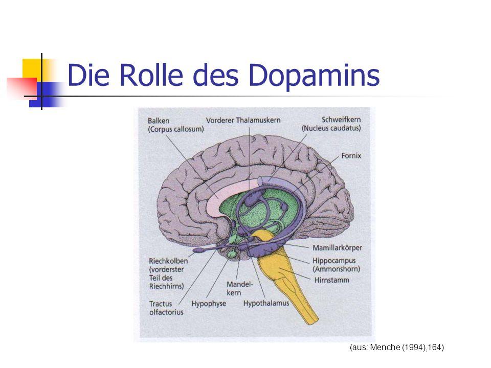 Die Rolle des Dopamins (aus: Menche (1994),164)