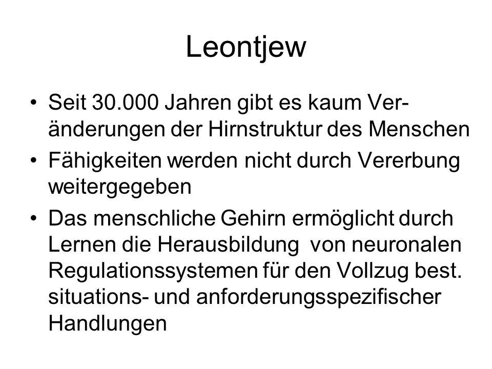 Leontjew Seit 30.000 Jahren gibt es kaum Ver- änderungen der Hirnstruktur des Menschen. Fähigkeiten werden nicht durch Vererbung weitergegeben.
