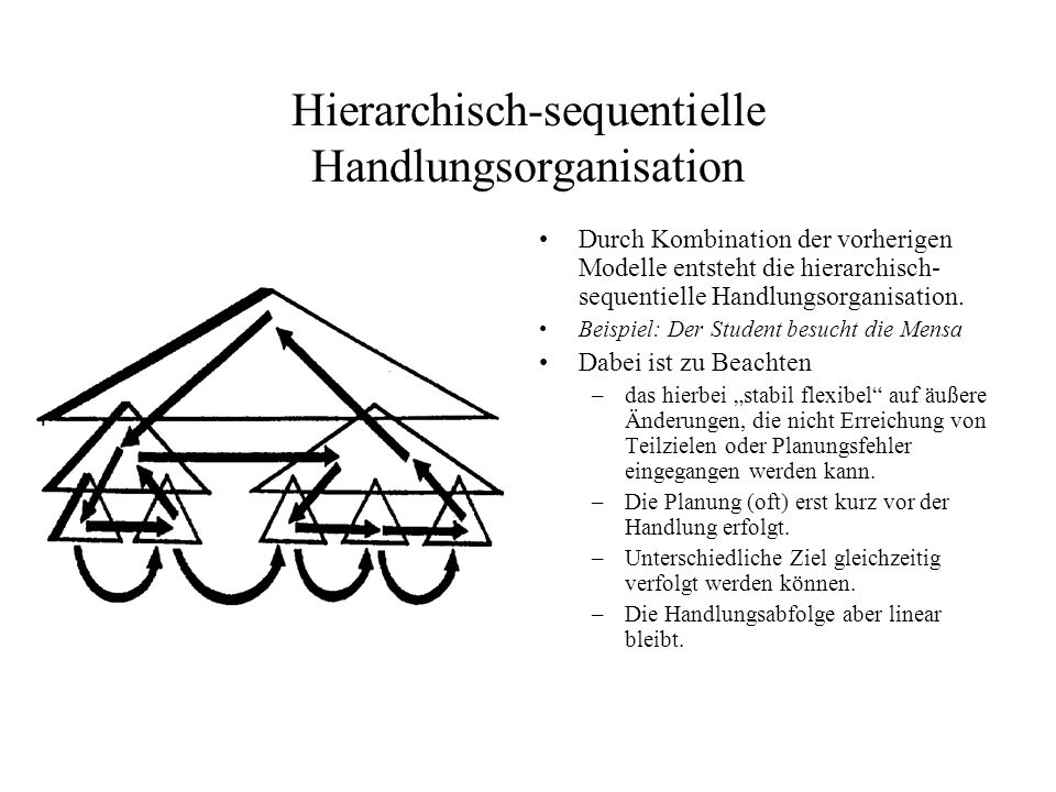 Hierarchisch-sequentielle Handlungsorganisation