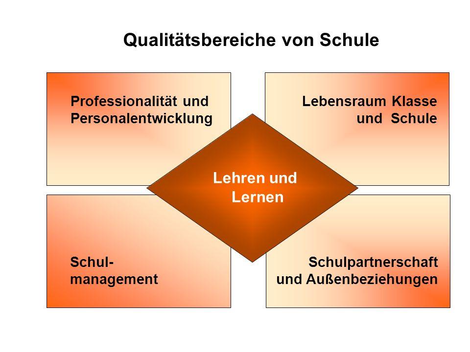 Qualitätsbereiche von Schule