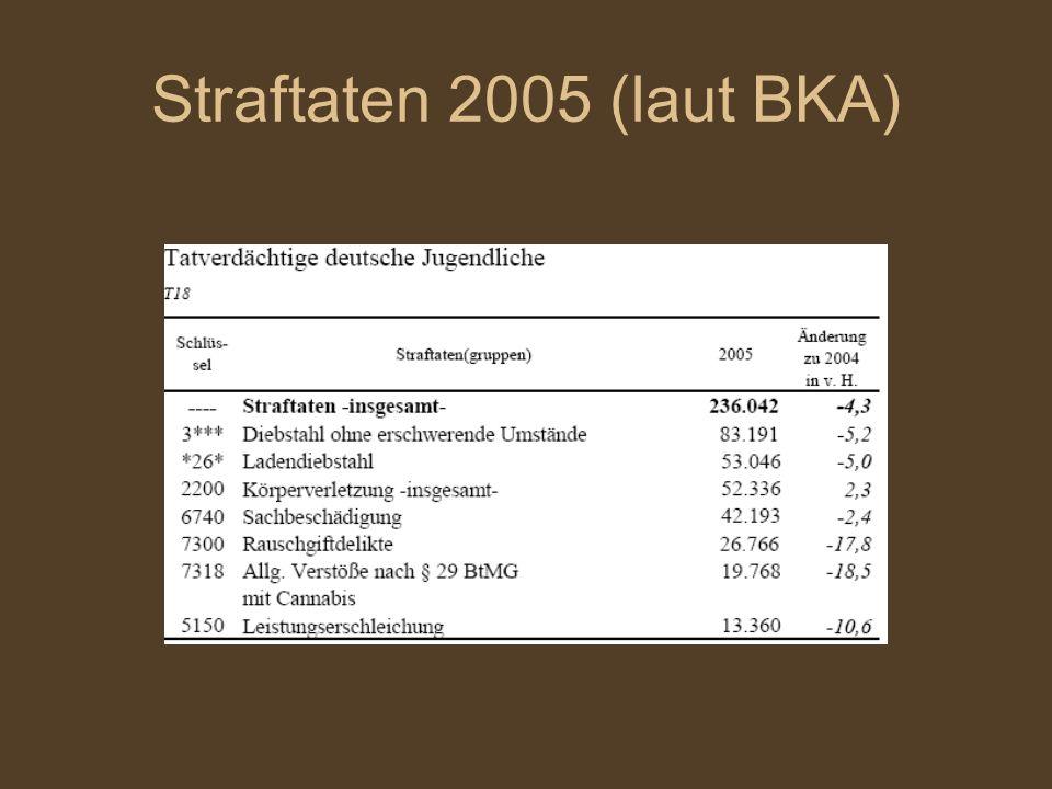 Straftaten 2005 (laut BKA) 14 bis unter 18 Jahre