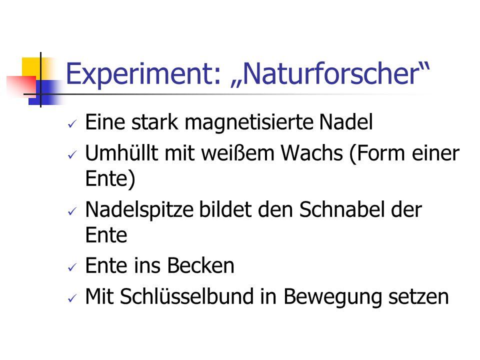 """Experiment: """"Naturforscher"""