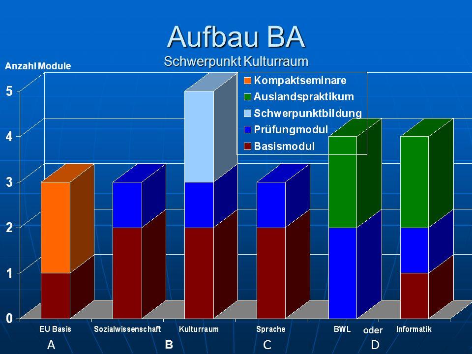 Aufbau BA Schwerpunkt Kulturraum