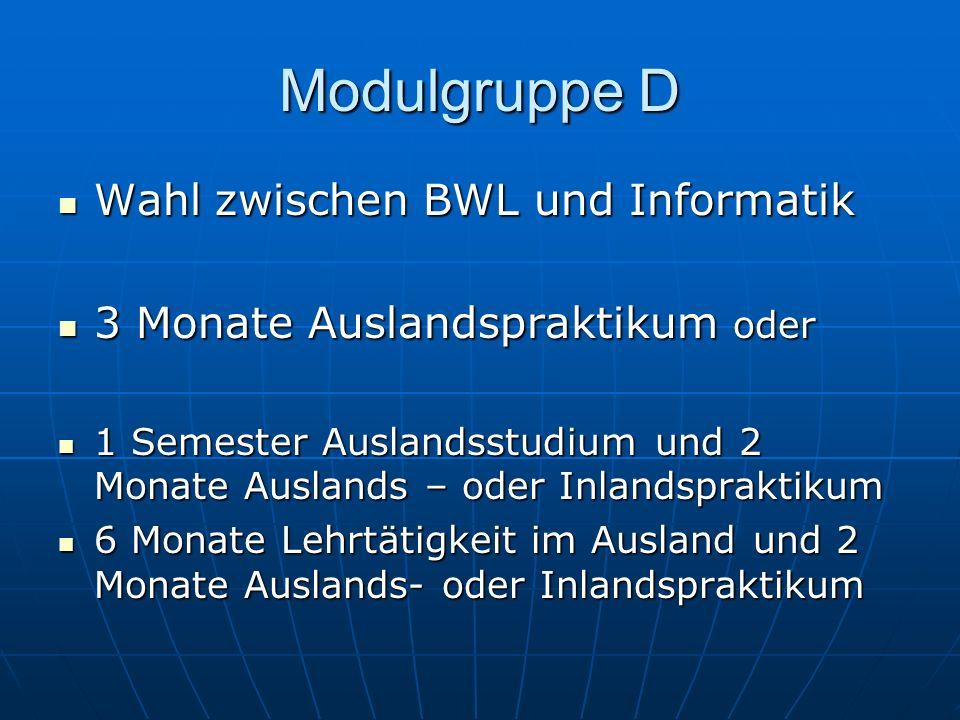 Modulgruppe D Wahl zwischen BWL und Informatik