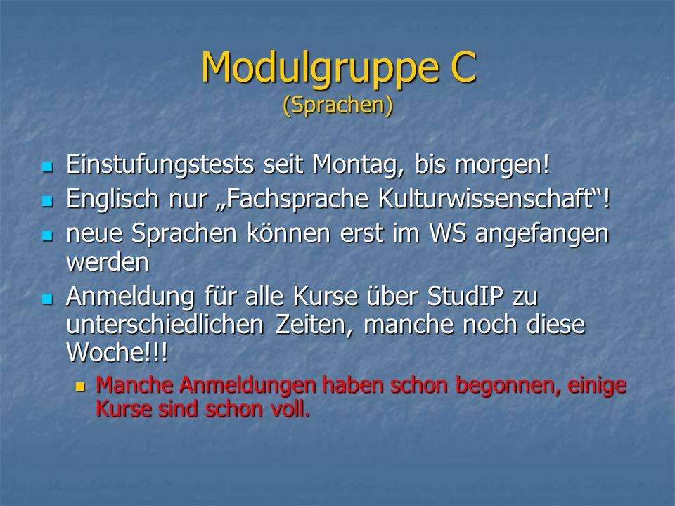 Modulgruppe C (Sprachen)