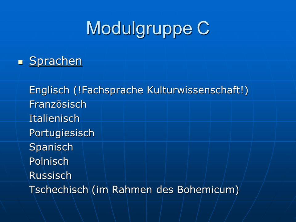 Modulgruppe C Sprachen Englisch (!Fachsprache Kulturwissenschaft!)
