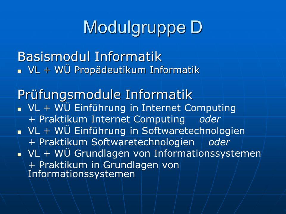 Modulgruppe D Basismodul Informatik Prüfungsmodule Informatik