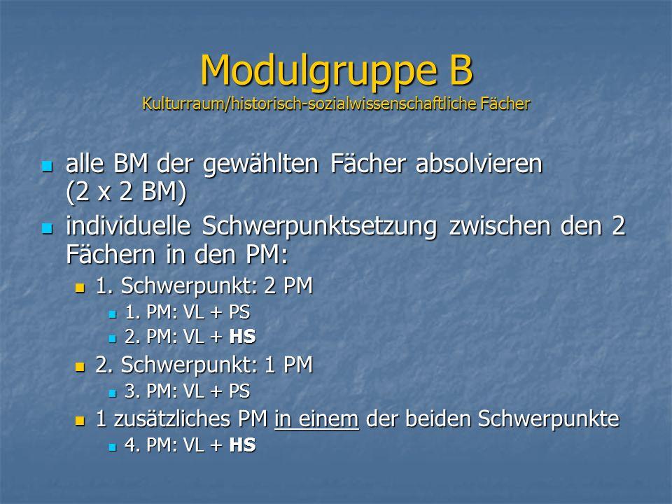 Modulgruppe B Kulturraum/historisch-sozialwissenschaftliche Fächer